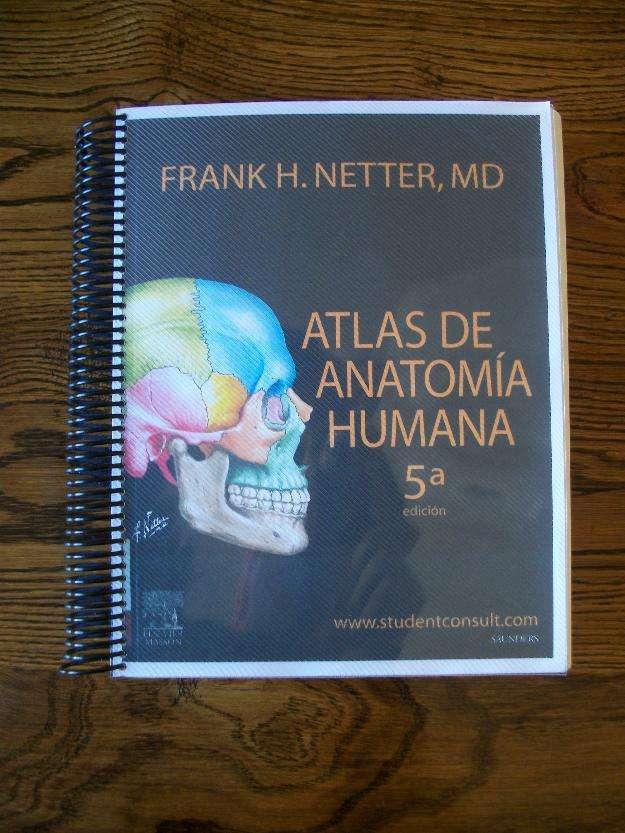 Atlas de anatomía humana de frank netter 5°edición en Santiago ...