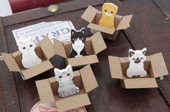Post it de gato en cajas individuales