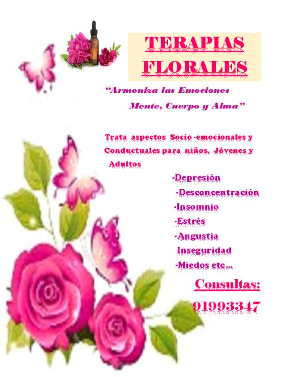 Terapia floral y aromaterapias un buen apoyo psicoterapeutico